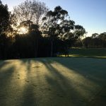 footprints in dew on fifth green at Cammeray Golf Club