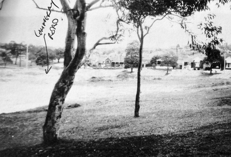 Area of old 1st green, now Cammeray Park